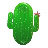 Pool Float-Cactus